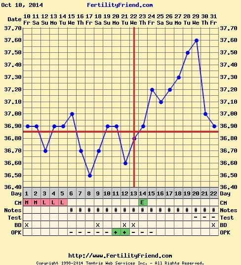 gravid temperaturstigning