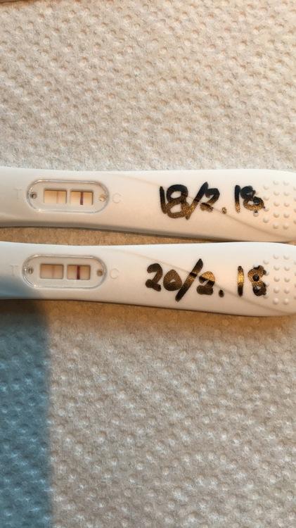 0B1F9CA1-3EEB-411C-850B-4BB90D496A2A.jpeg