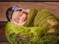Gravid-, nyfødt- og børne fotografering
