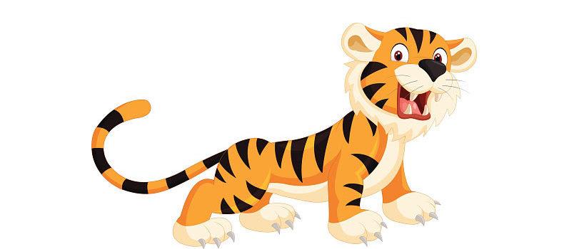 Tigerspring